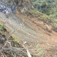 El Cabildo sanea el talud desde el que se produjo el desprendimiento sobre la carretera de Martín Luis, en Puntallana