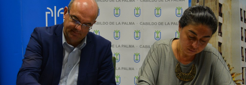 El Cabildo lleva a licitación las obras para crear una glorieta que mejore el acceso a la carretera de Los Quemados en Fuencaliente